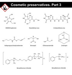 Structures of main cosmetic preservatives vector image vector image