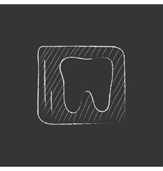 X-ray of tooth drawn in chalk icon vector