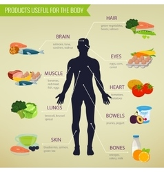 Products useful for the body healthy eating vector