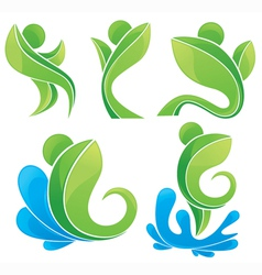 leaves and water nature symbols vector image vector image