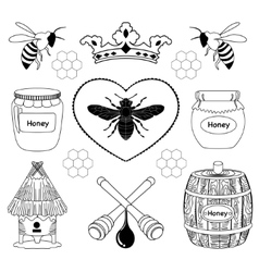 Bee honey icon vector