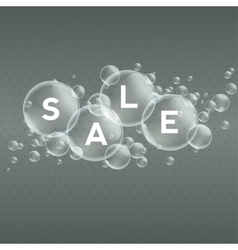 Price labels in bubbles sale vector