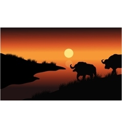 Bison silhouette in riverbank vector