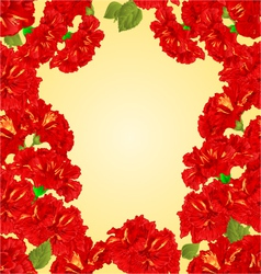 Seamless texture frame red hibiscus vector image vector image
