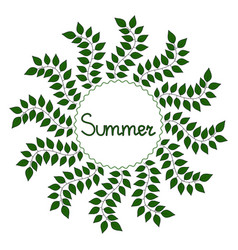 summer decorative frame vector image