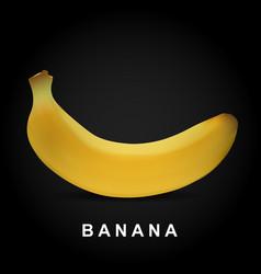 Big yellow isolated banana fruit vector