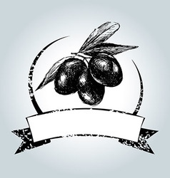 Vintage label with black olives vector