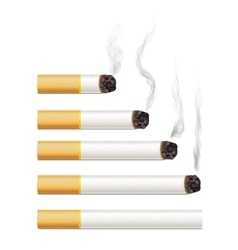 Set of five different realistic cigarettes with vector