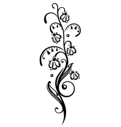 Spring time snowdrops vector image