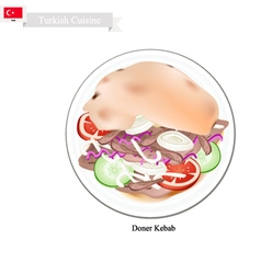 Doner kebab a famous dish in turkey vector