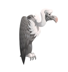 Funny vulture on white background isolated vector image vector image