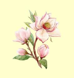 Watercolor magnolia floral composition vector