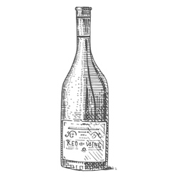 Wine bottle hand drawn engraved old looking vector image