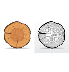 Tree rings and saw cut tree trunk vector
