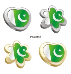 flag of Pakistan vector image vector image
