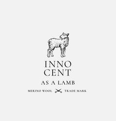 Innocent as a lamb abstract sign symbol vector