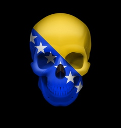 Skull with bosnia and herzegovina flag vector