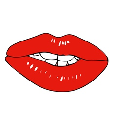 Fleshy lips vector