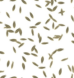 Cumin seeds vector