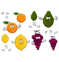 Funny cartoon isolated fruit characters vector