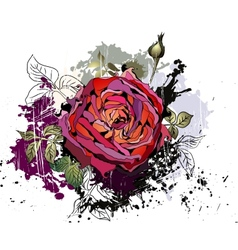 Beautiful grunge background with rose vector