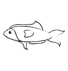 Blurred silhouette fish aquatic animal vector
