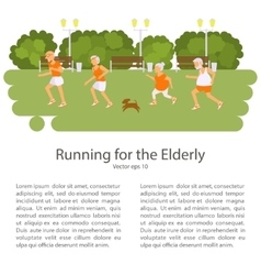 Elderly people doing exercises vector