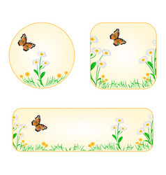 Banner and buttons daisy with butterfly vector