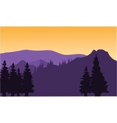 Silhouette or fir trees on the mountain vector image