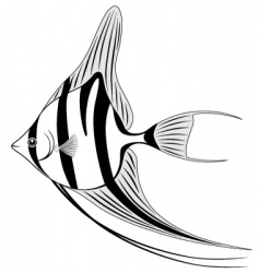 angel fish vector image vector image