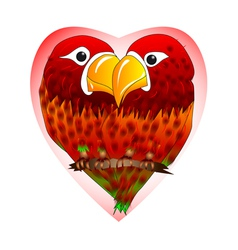 enamored parrots vector image vector image