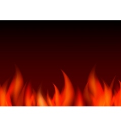 Fire background vector