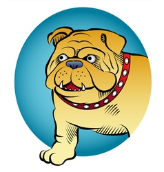 bulldog comic style vector image vector image