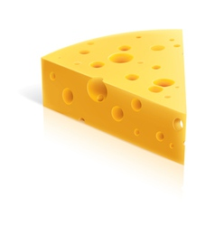 Cheese slice vector