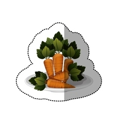 Colorful sticker of carrots vegetable vector