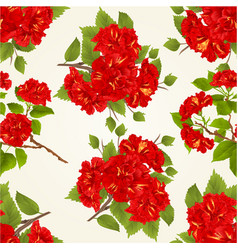 seamless texture red hibiscus tropical flowers vector image vector image