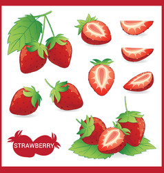 Set of strawberry fruit with leaf in slice half vector