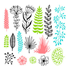 Floral set with flowers and leaves vector
