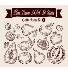Hand drawn doodle set fruits vector image vector image