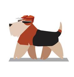 Terrier minimalist image vector