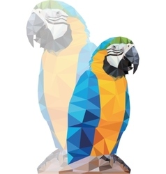 Tropical triangular blue macaw parrot on a rock vector