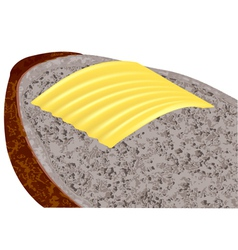 Butter on bread vector
