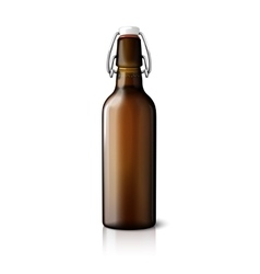 Blank brown realistic retro beer bottle isolated vector