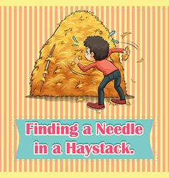 Idiom finding a needle in a haystack vector