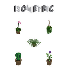 Isometric plant set of blossom grower plant and vector