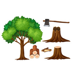 Tree and stump trees vector