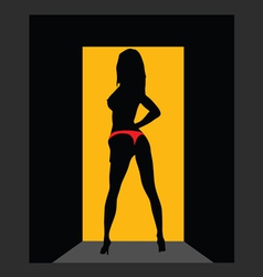 girl in red panties on door vector image