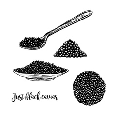Hand drawn set of plate with black caviar vector