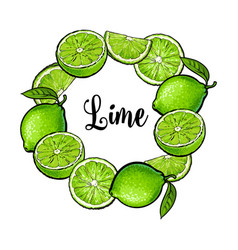Round frame of green lime fruits with place for vector