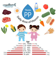 Vitamin pp or nicotinamide infographic vitamin pp vector